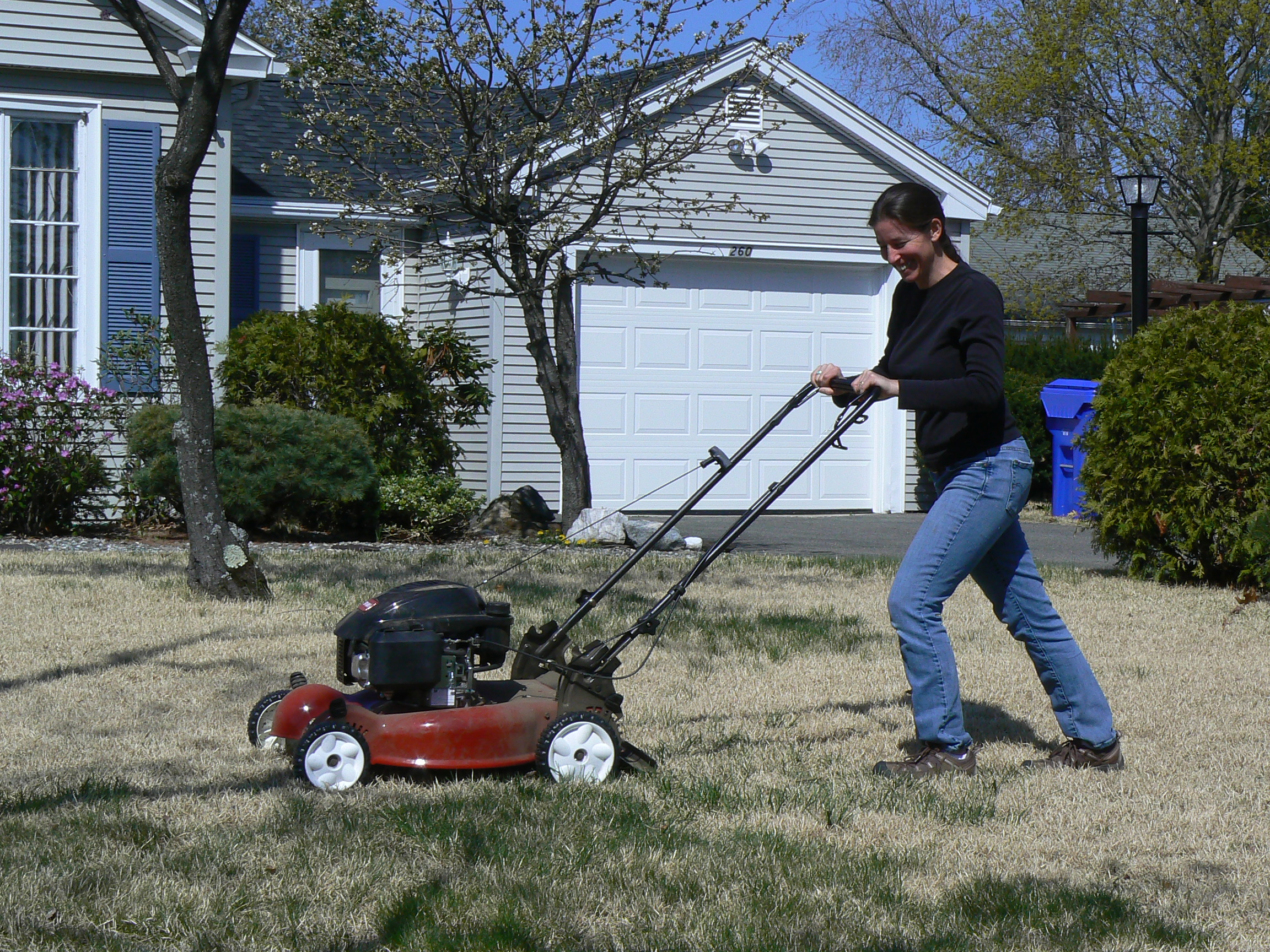 A picture of a lady pushing a power lawn mower over a grassy yard.
