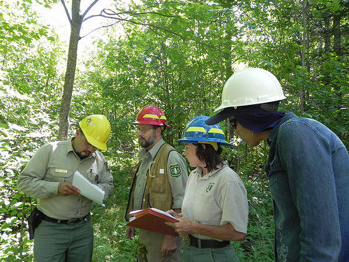 A photo of four natural resources professionals standing in a forest