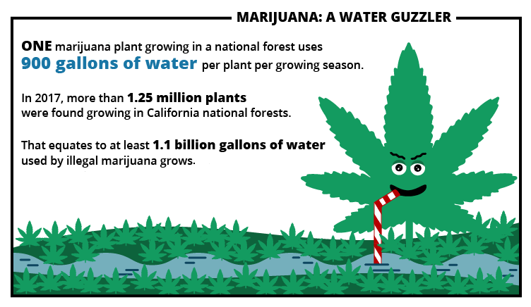 Marijuana Growing Areas California Map.Forest Service Scientists Do Some Serious Sleuthing To Detect