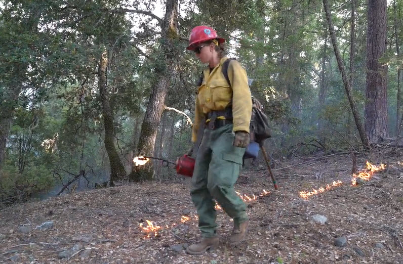female firefighter with drip torch