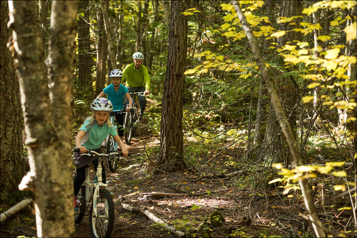 A photo of a family riding bikes through the forest