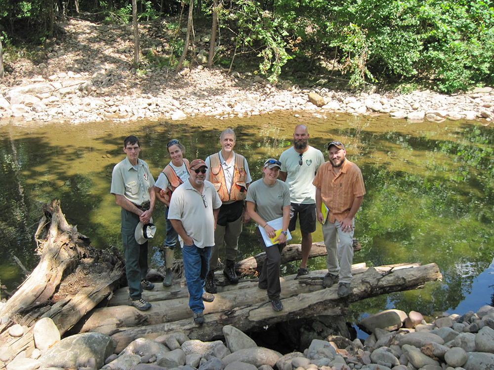 A photo of Trout Unlimited partners and FS atop a recently completed Large Wood Material structure