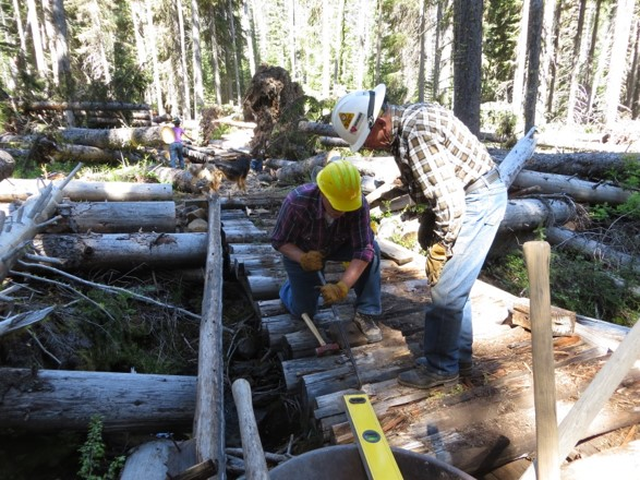Volunteers   US Forest Service