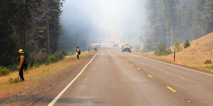 A picture of several firefighters on the side of a smoke-filled road.