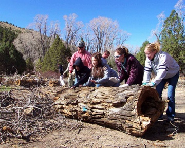 Volunteers annually contribute thousands of hours of work on the Manti-La Sal National Forest.