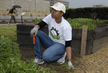 Carmen Young, a MobilizeGreen intern, volunteered in the People's Garden at the Department of Agriculture in Washington, DC.