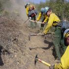 Fire crew digging fire line