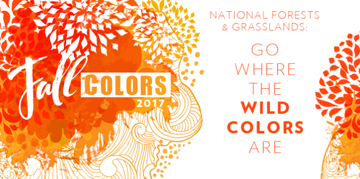 A graphic of fall colors banner that reads national forests and grasslands, go where the wild colors are