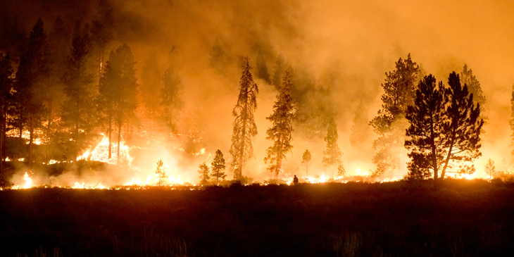 A photo of the Little Queens Fire in Boise NF; Atlanta; Idaho; 2013