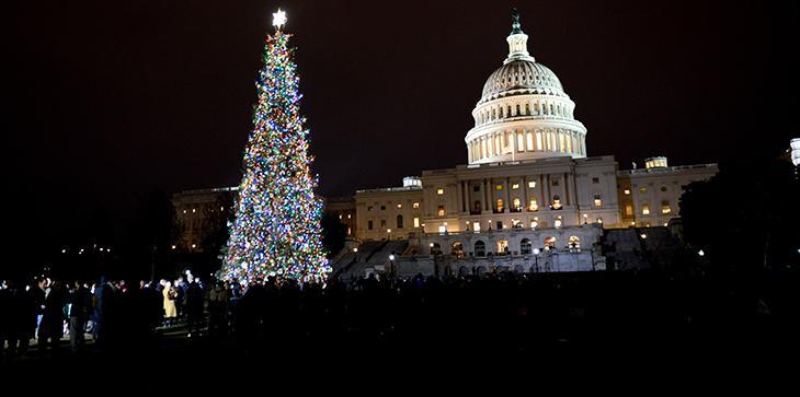 'Noble' Christmas Tree Illumines Capitol Hill