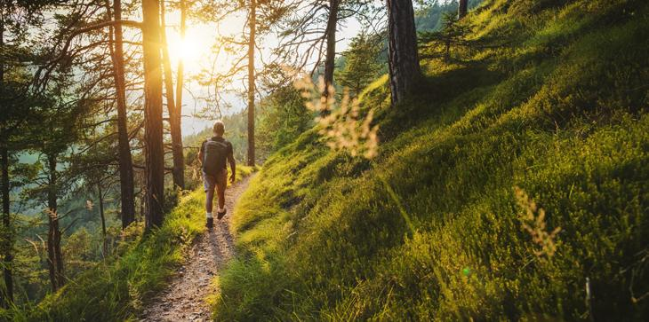 A picture of a hiker walking on a forested trail with the sun at either a sunrise or sunset position.
