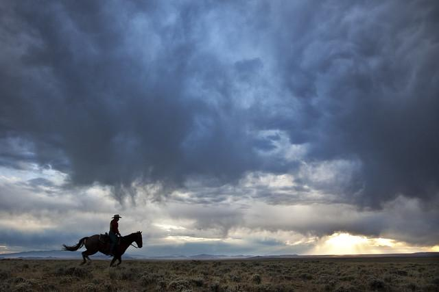A silhouette of a horse and rider in the prairie at sunset.