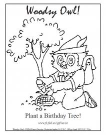 woodsy owl color page plant a birthday tree