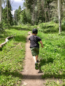 A photo of a child running on a trial through the forest