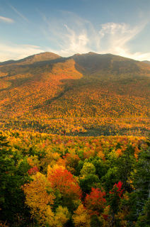 A photo of Mount Adams in New Hampshire's White Mountain National Forest