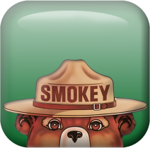 A square graphic of smokey bear