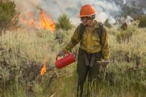 Roosevelt Hotshot Brianhead Fire, Utah 07/03/2017. Forest Service Photo