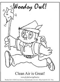 An illustration of Woodsy Owl clean air