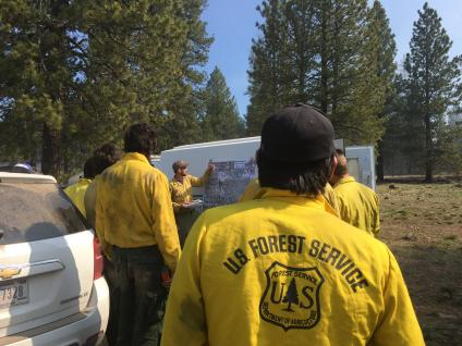 join the US Forest Service team