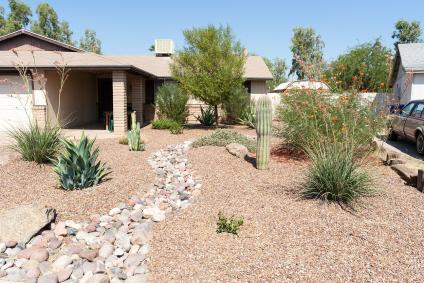 A picture of residential property that used native plants, like cactus around the yard, in landscaping to benefit desert bird species.