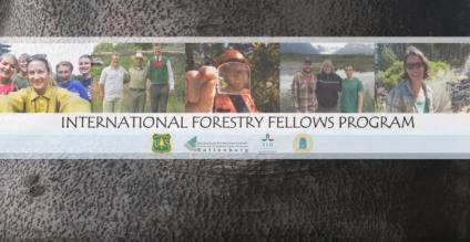 Video splash page with the text of International Forestry Fellows Program