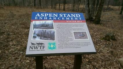"interprestative sign instaslled In Green Lakes National Forest. The sign's title reads ""Aspen Stand Enhancement"""