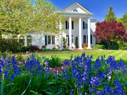 A picture of bright blue wildflowers that adorn the lawn of a Northern Virginia home.