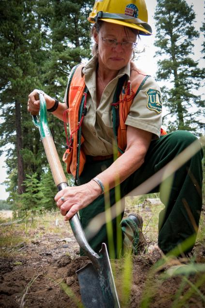 A picture of a Forest Service ranger working in the field, with a shovel, on the Fremont-Winema National Forest.