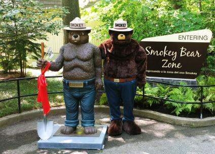A picture of Smokey Bear standing next to his statue outside the new Smokey Bear exhibit at Smithsonian's National Zoo.