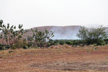 Arid ares in Puerto Rico, suceptible to wildfires