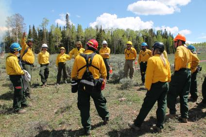 A picture of several wildland firefighters gathered in a circle discussing the day's plan.  Everyone is wearing a hardhat, yellow shirt and green pants.