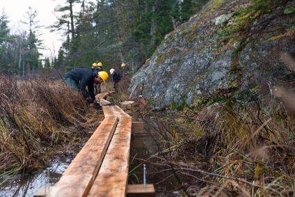 Ottawa National Forest staff using hand tools to replace the White Dear Lake trail boardwalk with new cedar planks and supports in the McCormick Wilderness.