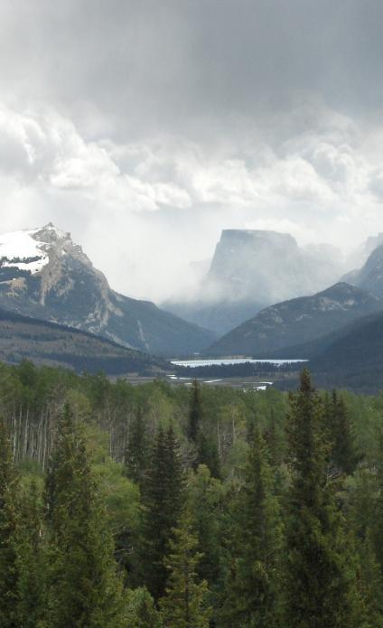 An image of mountain peaks under a gray cloudy sky, with a forest in the foreground.