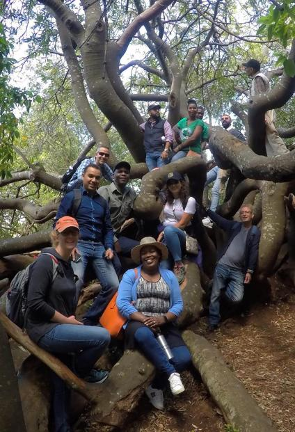 Participants pose on the root system of a massive tree.