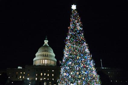 "The ""People's Tree"" lights up the U.S. Capitol."
