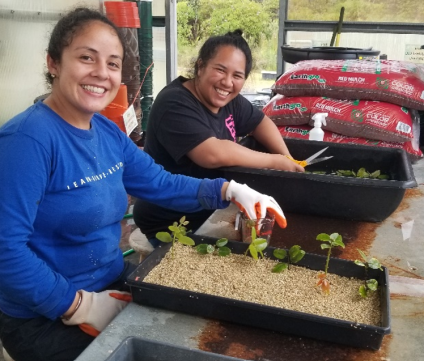 Two smiling young women are planting tree seedlings in bins of dirt.