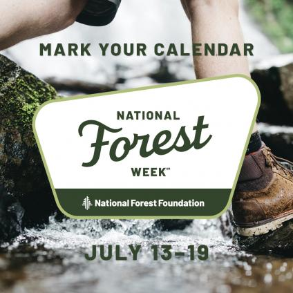 National Forest Week 2020