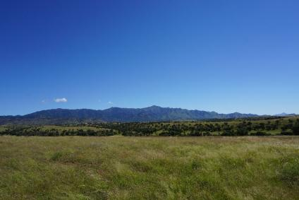 A scenic picture of the The Huachuca Mountains located in the Coronado National Forest