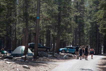 A picture of a developed campground area with several vehicles and tents seen parked and a group of people walking down the access road.