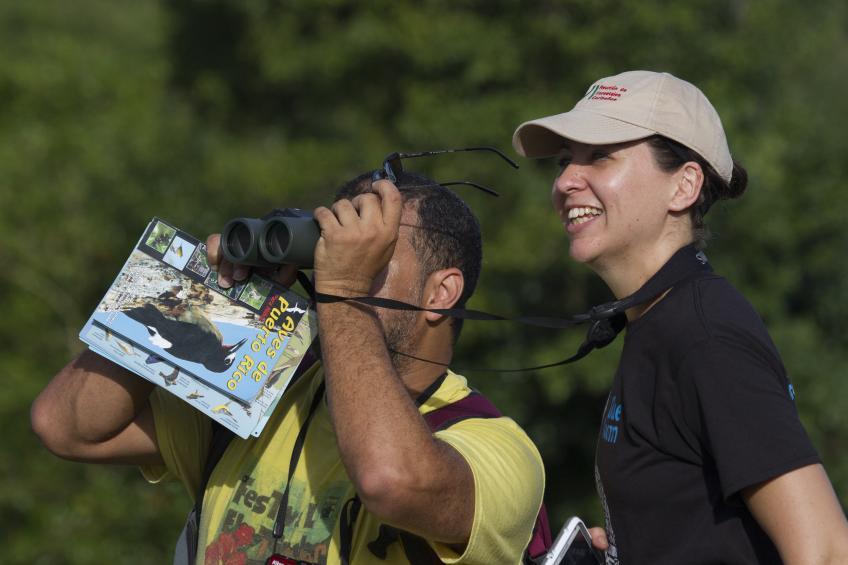 People watch birds with binoculars