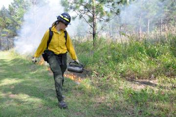 A picture of forest technician Louise Loudermilk conducting controlled burning with a drip torch for management and ecological objectives.