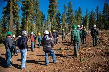 The North Yuba Forest Partnership plans to use a Forest Resilience Bond to finance forest restoration across the 275,000 acre North Yuba River watershed.