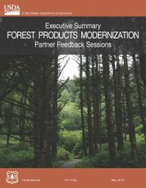 Executive Summary Forest Products Modernization Partner Feedback Sessions