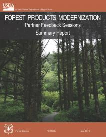 Forest Products Modernization Partner Feedback Sessions Summary Reports