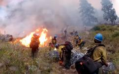 United States Forest Service Veteran Fire Fighters:  A New Front Line