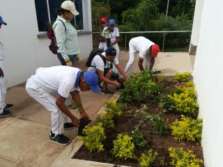 A picture of several individuals tending to a garden area