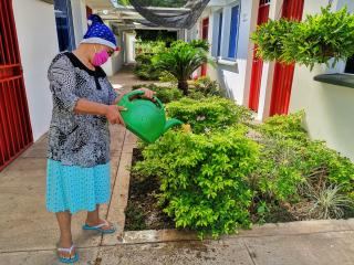 A picture of an adult watering a flower garden.