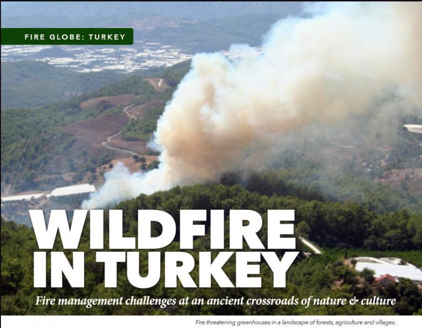 "Grab of a magazine page with headline reading: ""Wildfire in Turkey."""