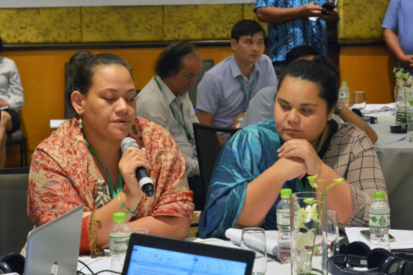 The delegation of Samoa reporting on their nationally determined commitment process. USDA Forest Service by P. Stoehr.