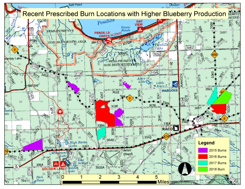 Prescribed fire map of blueberries in Hiawatha